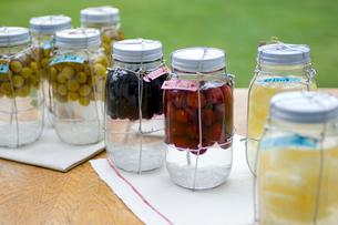 果実酒の瓶詰めの写真素材 [FYI03918456]