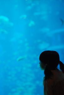 水族館の女の子の写真素材 [FYI03918756]