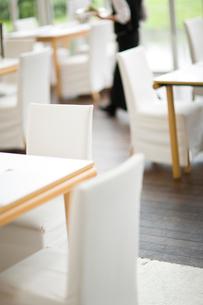 レストランの客席の写真素材 [FYI03919456]