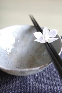 和食器と箸とランの写真素材 [FYI03919622]
