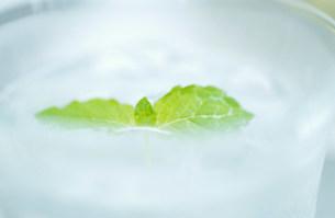 グラスの水の写真素材 [FYI03921030]