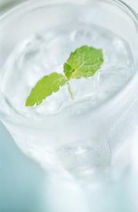 グラスの水の写真素材 [FYI03921031]