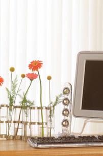 花とパソコンの写真素材 [FYI03921180]