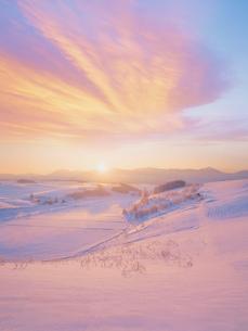 朝の十勝連峰と雪原の写真素材 [FYI03921918]