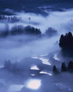 棚田と朝霧の写真素材 [FYI03922176]