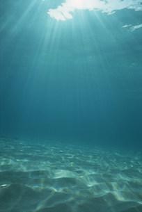水中の太陽光線の写真素材 [FYI03922605]