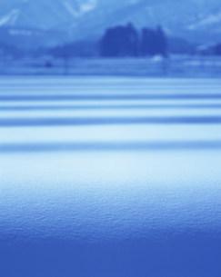 雪原の写真素材 [FYI03922678]