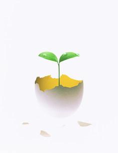 植物 CGのイラスト素材 [FYI03923267]