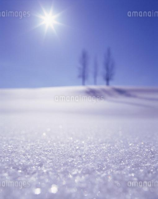 輝く雪面の写真素材 [FYI03923356]