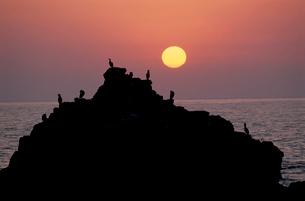 大きな岩影と夕日沈む日本海の写真素材 [FYI03923818]