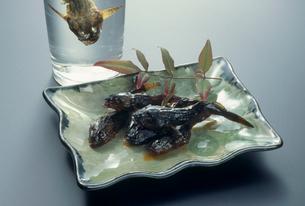 カジカのカンロ煮とカジカの香り酒の写真素材 [FYI03924240]