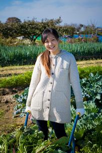 一輪車で収穫した野菜を運ぶ20代の女性の写真素材 [FYI03924245]