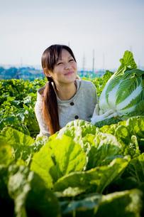 収穫したハクサイを持って笑う20代の女性の写真素材 [FYI03924250]