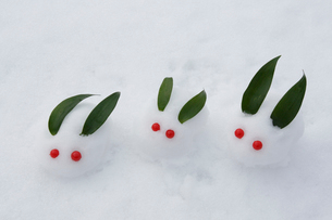 雪で作った雪うさぎの家族の写真素材 [FYI03924287]