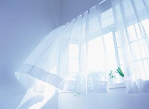 カーテンと窓の写真素材 [FYI03924346]
