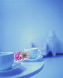 コーヒーカップの写真素材 [FYI03924940]