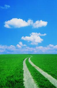 草原の道と雲の写真素材 [FYI03925348]