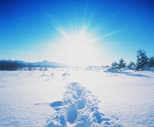 雪景色と太陽の写真素材 [FYI03925446]