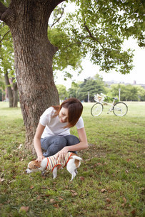 犬と女性の写真素材 [FYI03926192]