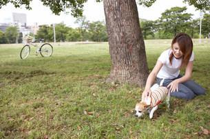 犬と女性の写真素材 [FYI03926194]
