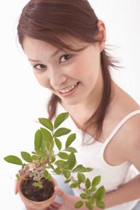 鉢植えと女性の写真素材 [FYI03926693]