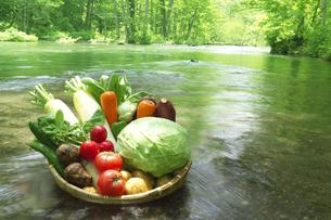 川に置かれた野菜の集合の写真素材 [FYI03927318]