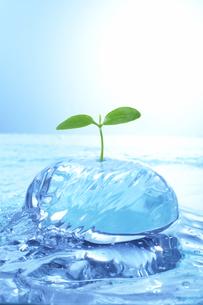 若葉と流水とガラスのオブジェのイラスト素材 [FYI03927509]