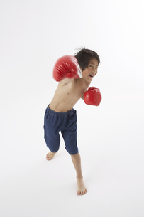 ボクシングをする男の子の写真素材 [FYI03927712]