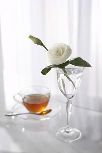 グラスとトルコキキョウと紅茶の写真素材 [FYI03927823]