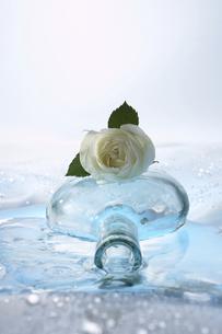 バラとガラス瓶の写真素材 [FYI03928234]