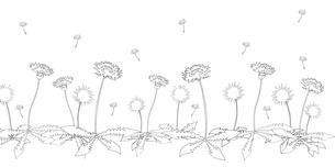 たんぽぽ線画のイラスト素材 [FYI03928356]