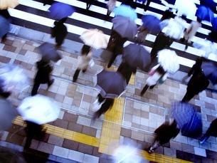 雨の中横断歩道を待つ人々の写真素材 [FYI03928402]