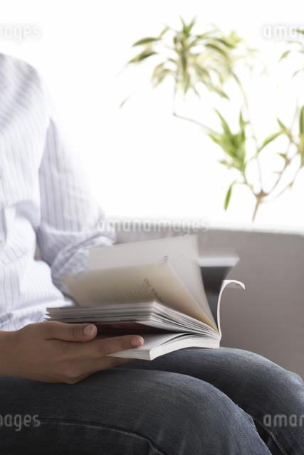ソファーで本をめくっている女性の写真素材 [FYI03928439]