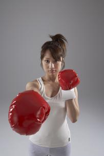 ボクシングをしている女性の写真素材 [FYI03928520]