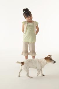 犬と遊んでいる女の子の写真素材 [FYI03928569]