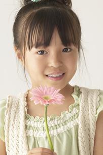 ガーベラの花を持っている女の子の写真素材 [FYI03928571]