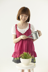 植物に水をやる女性の写真素材 [FYI03928592]