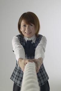 綱引きをしている女性の写真素材 [FYI03928631]