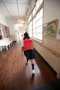 赤いランドセルの小学生の後ろ姿の写真素材 [FYI03928829]