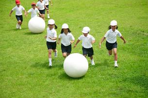 校庭で球転がしをする小学生の写真素材 [FYI03928910]
