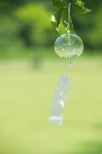 庭先で揺れる風鈴の写真素材 [FYI03929182]