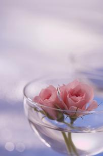 ガラスのボールに飾ったバラの花の写真素材 [FYI03929297]