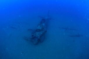 海底に沈むゼロ戦,海中の写真素材 [FYI03929580]
