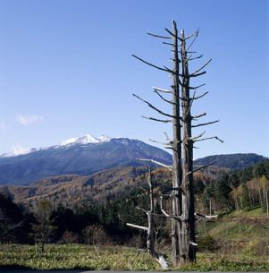 乗鞍岳と野麦峠の写真素材 [FYI03930052]