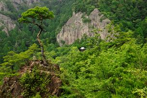 鳳来寺 鏡岩と鐘楼を望むの写真素材 [FYI03930105]