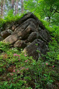 松倉城址 東南隅櫓の石垣の写真素材 [FYI03930116]