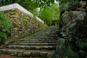 小倉山城址 本丸の石垣と石段の写真素材 [FYI03930173]