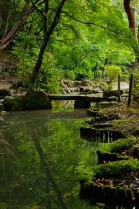 小倉山城址 本丸跡の庭園の写真素材 [FYI03930175]