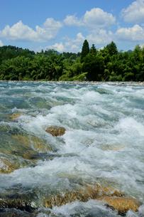 長良川の渓流の写真素材 [FYI03930230]