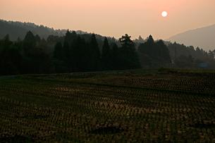 関ケ原古戦場の日の出・決戦地付近の写真素材 [FYI03930282]